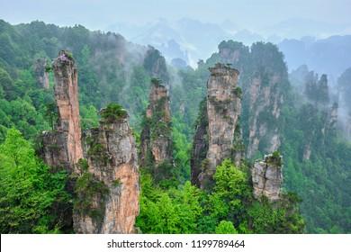 Famous tourist attraction of China - Zhangjiajie stone pillars cliff mountains in fog clouds at Wulingyuan, Hunan, China
