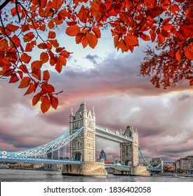 Famous Tower Bridge with autumn leaves in London, United Kingdom