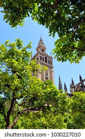 Famous tower of Giralda, Islamic architecture built by the Almohads and crowned by a Renaissance bell tower with the statue of Giraldillo at its highest point, Seville Cathedral, Andalusia, Spain