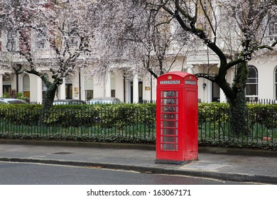 Famous, typical red british telephone booth under a tree blossoming in spring in a street with victorian houses in London, capital of the UK