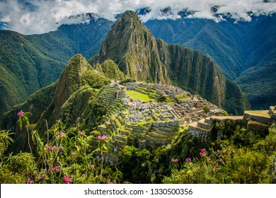 Famous view of Machu Picchu city in pink flowers, Peru