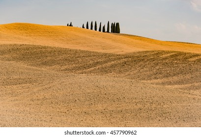 famous views of the hills gold in the warm sun of wine Brunello di Montalcino lands in the central Tuscany in the province of Siena