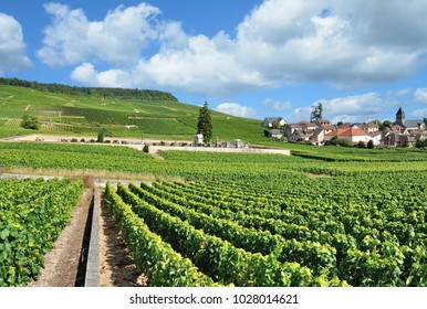 famous Village of Oger in Champagne region near Epernay,France