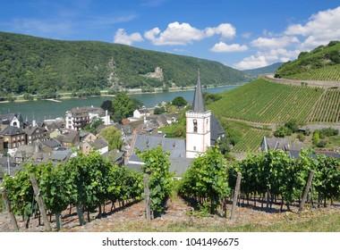famous Wine Village of Assmannshausen near Ruedesheim am Rhein,Rheingau,Hesse,Germany