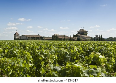 A famous winery in Bordeaux