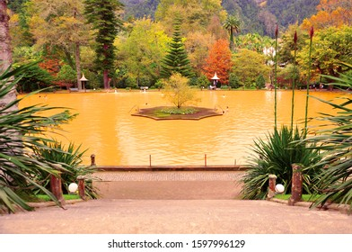 The famous yellow thermal pool in the Terra Nostra botanical garden at Furnas, Sao Miguel island, Azores, Portugal