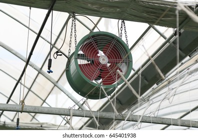Fan in agriculture greenhouse