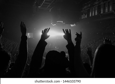 A fan at a concert with their arms up cheering.