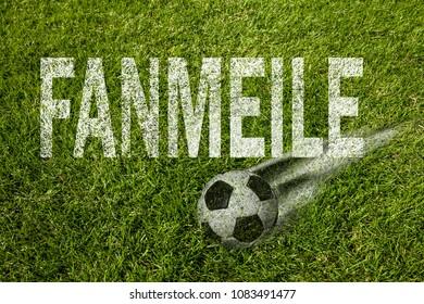 Fan mile (in german) written on soccer meadow