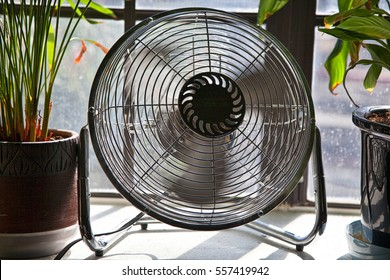Fan in motion between potted plants providing a cool breeze