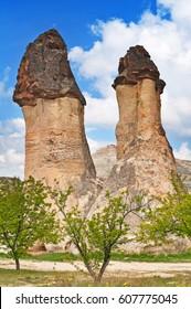 Fanciful weathered rocks, tuff similar to Morel mushrooms.