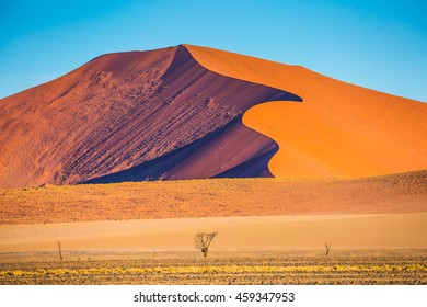 Fancifully curved sharp crests of orange dunes. Travel to Namibia. Namib-Naukluft National Park