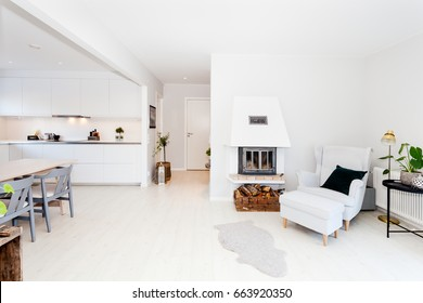 fancy home interior scandinavian style