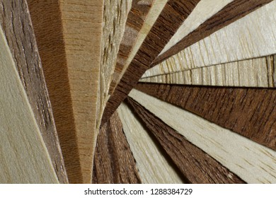 Fan-paved samples of such veneer as beech, oak, birch, sapele, laywood, hornbeam, cherry wood, wenge, black apricot wood, anegri, pine, ash, hazel