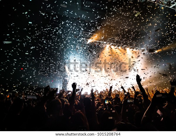 Fans Cheering at Concert