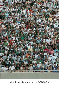 fans at a football game