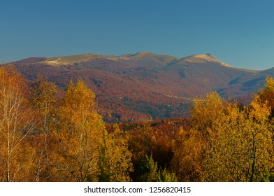 Fantastic autumn colors in the Carpathians. Bieszczady Mountains. Bukowe Berdo, Krzemien. Bieszczady National Park