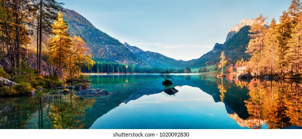 nature background images stock photos vectors shutterstock