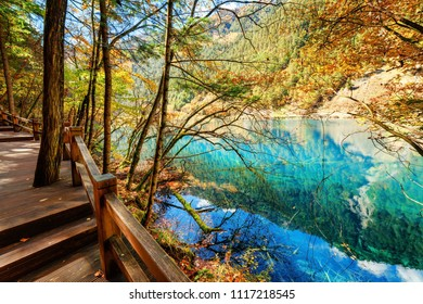 Fantastic azure lake among colorful fall woods in the Shuzheng Valley, Jiuzhaigou nature reserve (Jiuzhai Valley National Park), China. Blue sky and mountains with evergreen forest reflected in water.