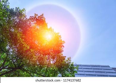 fantastic beautiful sun halo phenomenon in the city