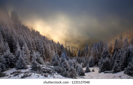 Fantastic dawn winter landscape with dramatic sunrise, fog and snow