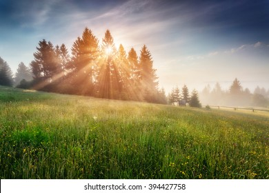 Fantastic day with blooming hills in warm sunlight at twilight. Dramatic and picturesque morning scene. Location place: Carpathian, Ukraine, Europe. Artistic picture. Beauty world. Soft filter effect.
