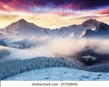 Fantastic evening landscape in the Swiss Alps. Colorful overcast sky. Europe. Beauty world.