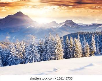 Fantastic evening winter landscape. Dramatic overcast sky. Creative collage. Beauty world. - Shutterstock ID 156145733