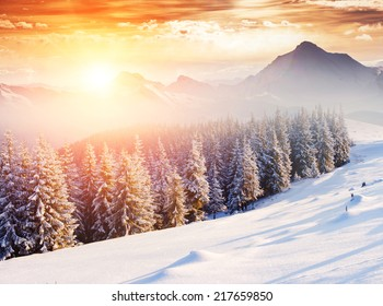 Fantastic evening winter landscape. Dramatic wintry scenery. Creative collage. National Park, Swiss, Europe. Beauty world. Retro style filter. Instagram toning effect. Happy New Year!