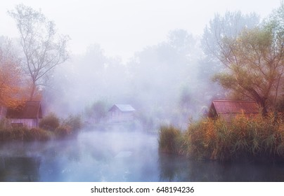 Fantastic foggy morning on a small fishing pond