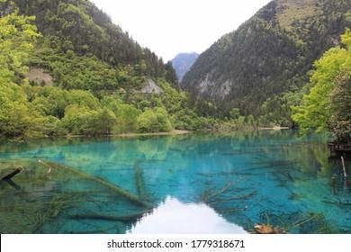 Fantastic lakes, flowers, falls and mountains, Jiuzhaigou(九寨溝) Sichuan China