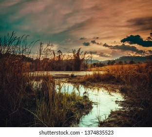 Fantastic landscape of orange sky with sunlight above lake in the forest.The foreground is a small stream flowing from the lake. Colorful sunset in the evening. Beautiful serenity nature background.