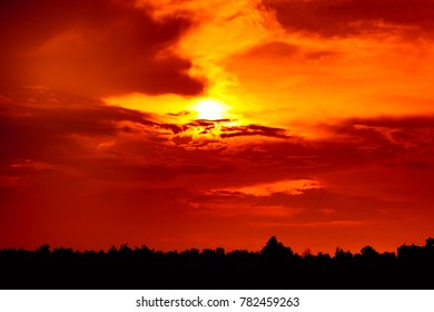 Fantastic landscape of red sky and sunbeam through cloud above silhouette of trees. Dramatic colorful scenery. Beautiful sunset in the evening, serenity nature background.