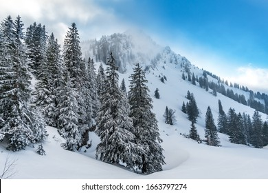 Fantastic snowshoe tour on the Hochgrat at the Nagelfluhkette in Allgau, Bavaria