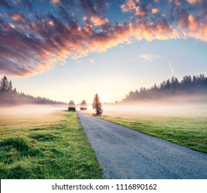 Fantastic summer sunrise in Durmitor Nacionalni Park. Impressive foggy scene of Montenegro countryside, Zabljak town location. Beautiful world of Mediterranean countries. Traveling concept background.