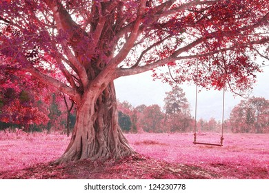 fantastic swing on tree, pink imagine forest