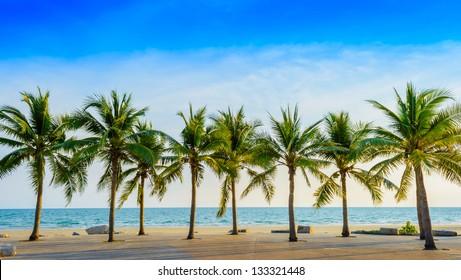Fantastic tropical beach with palms, Thailand