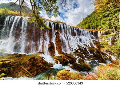 Fantastic view of the Nuo Ri Lang Waterfall (Nuorilang) among colorful fall woods in Jiuzhaigou nature reserve (Jiuzhai Valley National Park) of Sichuan province, China. Amazing autumn landscape.
