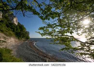 fantastic view to the white chalk coast of Møns Klint