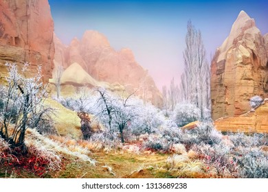 Fantastic winter landscape - bizzare ashen mountains (volcanic rock), frozen tree branches blotted out by the fog and blue sky in Love valley near Goreme, Cappadocia, Central Anatolia, Turkey