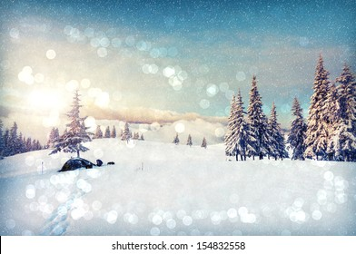 Fantastic winter landscape. Blue sky. Carpathian, Ukraine, Europe. Beauty world.