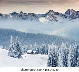 Fantastic winter landscape. Dramatic overcast sky. Creative collage. Beauty world.