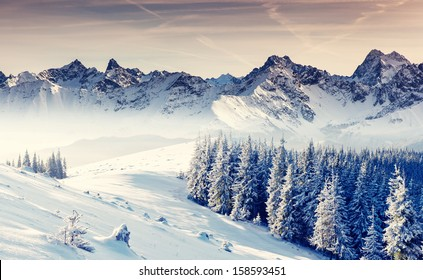 Fantastic winter landscape. Dramatic overcast sky. Creative collage. Beauty world.