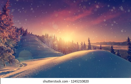 Fantastic winter landscape during sunset. colorful sky glowing sunlight. snow covered trees under warm sunlit. Sunlight sparkling in the snow. Splendid Alpine winter . Christmas background.