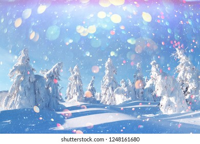 Fantastic winter landscape with snowy trees in high mountains. DOF bokeh light postprocessing effect. Christmas holiday collage