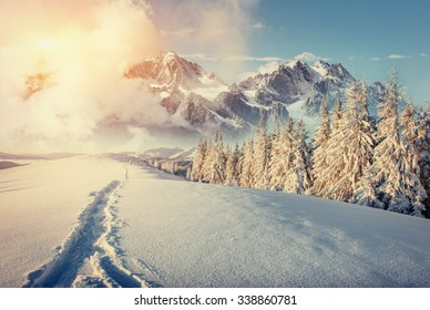 Fantastic winter landscape and trodden trails that lead into the mountains. Sunset. In anticipation of the holiday. Carpathian, Ukraine, Europe.