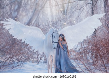 fantasy beautiful woman goddess stroking mythical Pegasus, white magic wings. Brunette Long flowing hair medieval princess vintage clothing cape. elf silver diadem tiara winter nature snowy forest