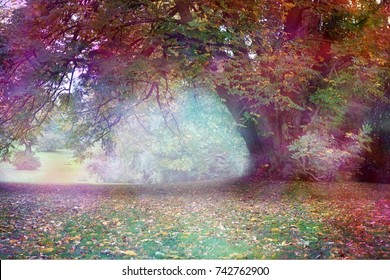 Fantasy Faerie Tree Landscape - Big multicolored tree with large draping branch in an ethereal light  landscape with feminine colors and copy space