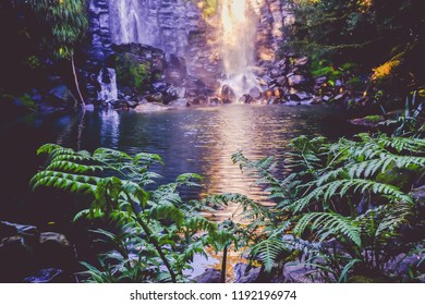 Fantasy fairy landscape - Wairoa / Te Wairere waterfall in Kerikeri, Far North District, Northland, New Zealand, NZ