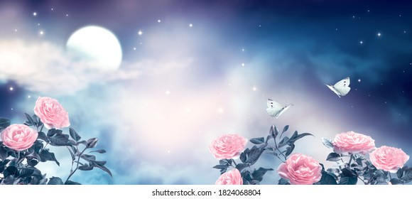 Fantasy fairytale photo background of beautiful fairy rose flower garden and butterflies, magical deep blue dark night sky, shining stars and glowing moon. Idyllic tranquil fabulous panoramic scene.